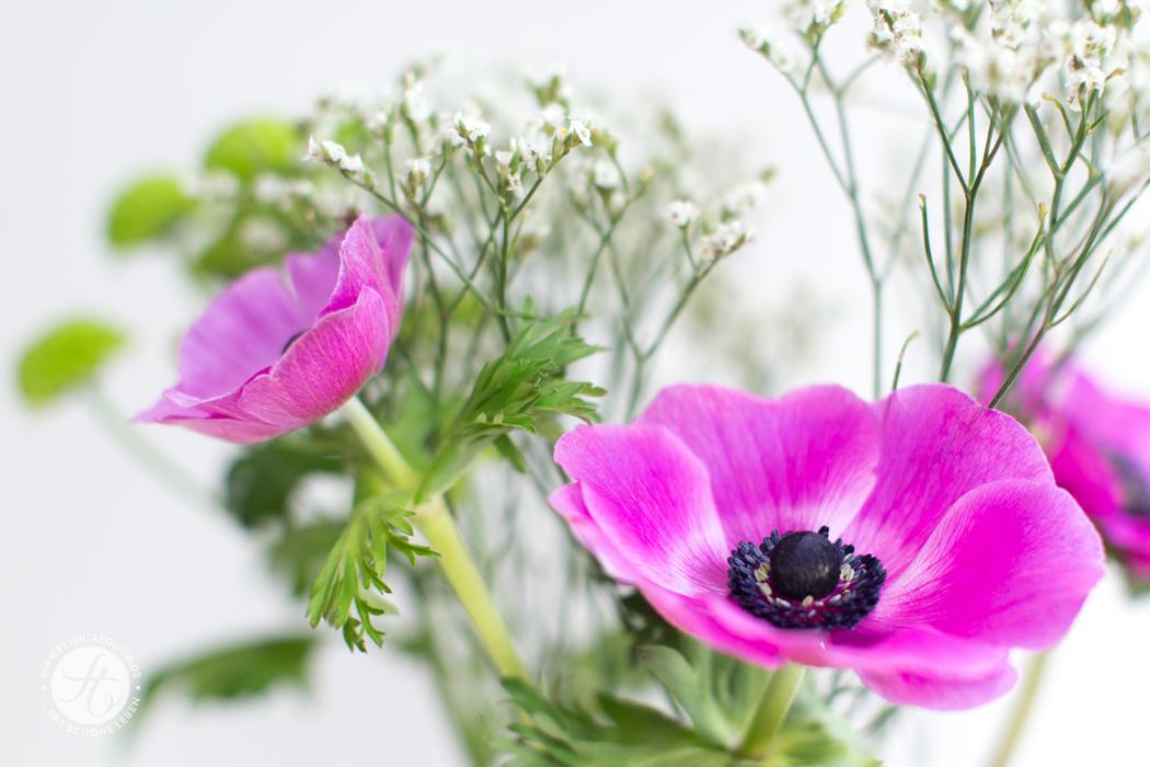 Pinke Anemonen, zauberhafter Blumenstrauss