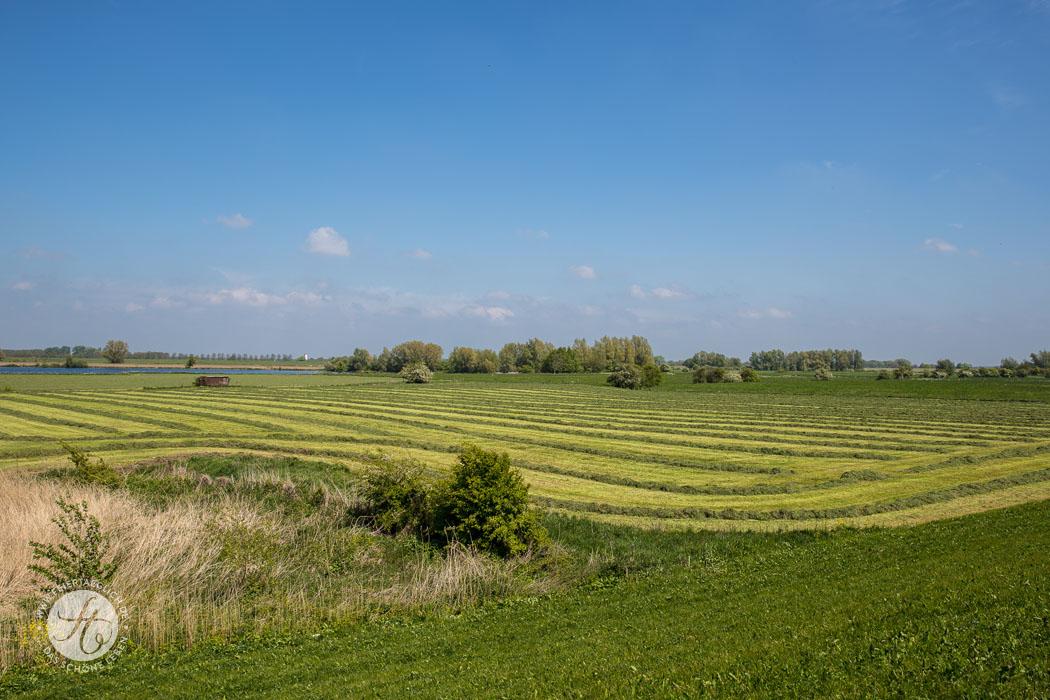 Landschaft Gelderland, lekker radeln – Ein Wochenende in Holland mit dem Fahrrad unterwegs (+ Radrouten mit Karten und GPS-Daten)