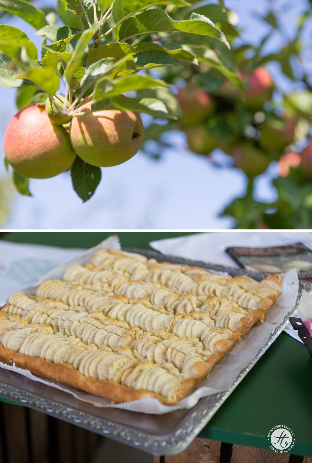 Blogevent-Apfelbaeckchen_ObsthofBey_kuchen