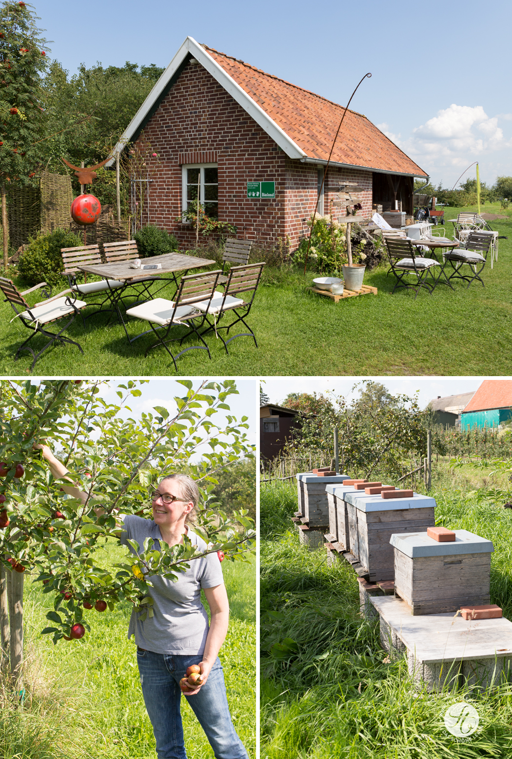 Blogevent-Apfelbaeckchen_BiohofOttilie1