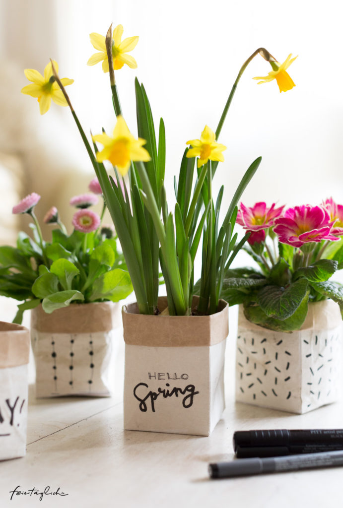 DIY Milchtüten Upcycling Planzentöpfe Frühlingsgrüße Hello Spring